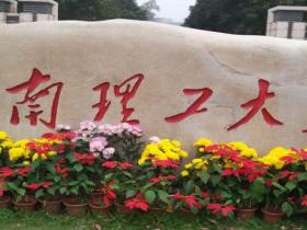 华南理工大学博士招生简章2019